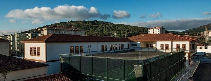 Ali Ulvi Kurucu Bilgi Evi ve Spor Merkezi is one of Bilgi Evleri ve Spor Merkezleri.