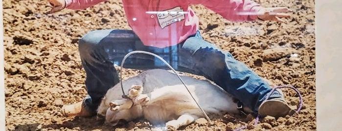 Rodeo Goat is one of Abdulaziz'in Beğendiği Mekanlar.