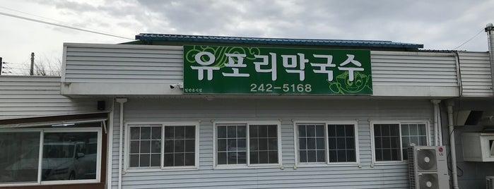 유포리막국수 is one of 춘천.