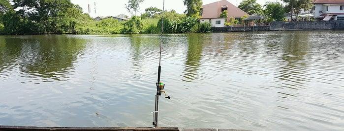 เงาน้ำ Fishing Park is one of Amaury 님이 저장한 장소.
