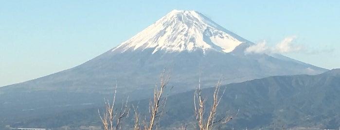 大瀬崎富士山ビュースポット is one of 伊豆.