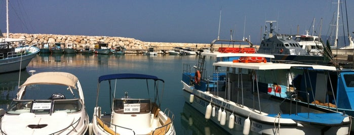 Latchi Harbor is one of Cypriot summers.