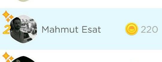 damla konutları is one of tugba.