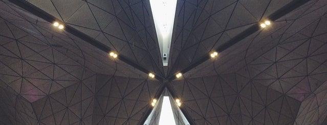 Pulkovo International Airport (LED) is one of Locais curtidos por Natalie.