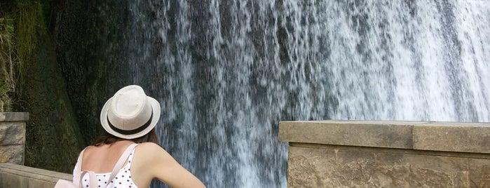Новоафонский водопад   ჩანჩქერი is one of Locais curtidos por Natalie.