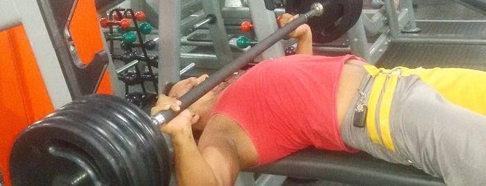 Kauã Fitness is one of Orte, die Ammy gefallen.