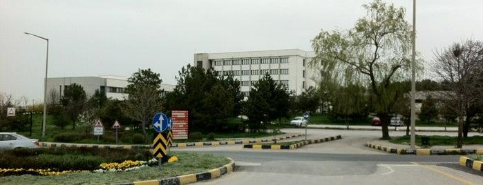 ODTÜ Eğitim Fakültesi is one of Tempat yang Disukai Gamze.