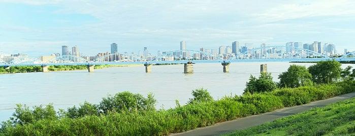 淀川河川公園(菅原) is one of 淀川探訪.