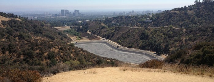 10 Free and Exciting Activities in Los Angeles
