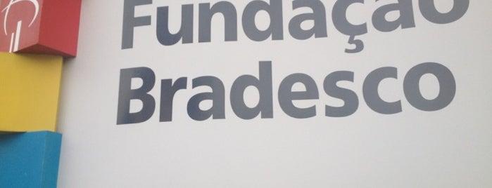 Fundação Bradesco is one of Serviços.