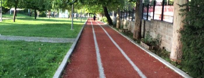 Demetevler Parkı Yürüyüş Yolu is one of Orte, die Necip gefallen.