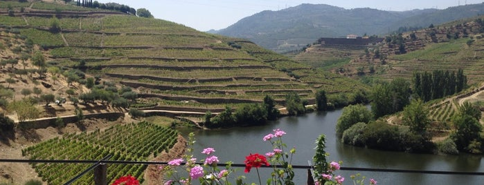 Quinta Do Tedo is one of Wine World.