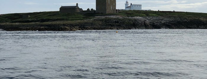 Inner Farne is one of Orte, die Carl gefallen.
