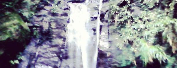 cachoeira do horto is one of Rio.