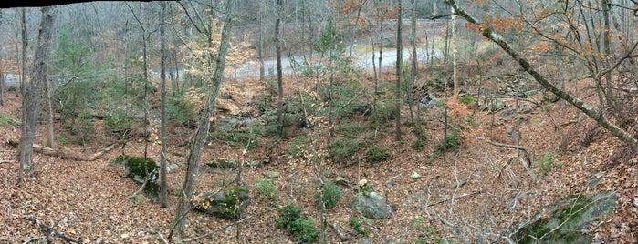Albemarle, NC is one of North Carolina.