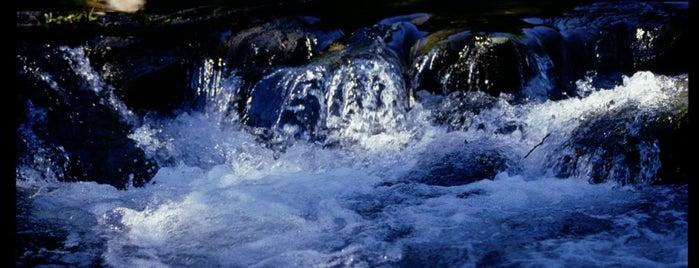 Riserva Naturale del Monte Soratte is one of Parchi e Riserve suggeriti da Roma&Più.