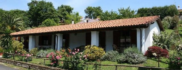 Trevignano Romano is one of Gli Agriturismi suggeriti da Roma&Più.