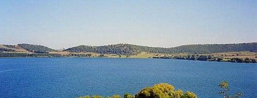 Lago di Martignano is one of I Laghi suggeriti da Roma&Più.