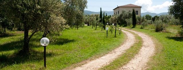 Gli Agriturismi suggeriti da Roma&Più
