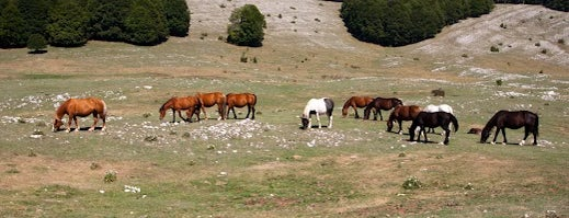 Monti Simbruini - Sentiero 663 is one of Parchi e Riserve suggeriti da Roma&Più.