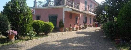 Albano Laziale is one of Gli Agriturismi suggeriti da Roma&Più.