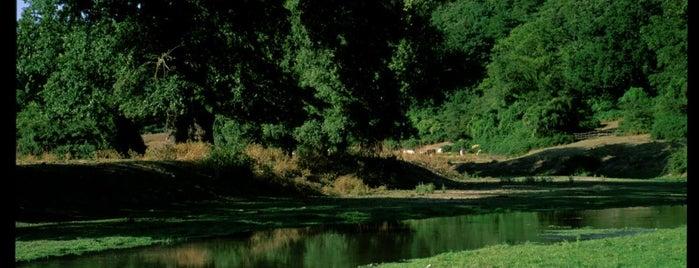 Parco di Veio is one of Parchi e Riserve suggeriti da Roma&Più.