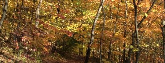 Core Arboretum is one of West Va.