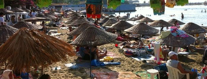 Arsuz Plaji is one of Orte, die Sadalmelek gefallen.