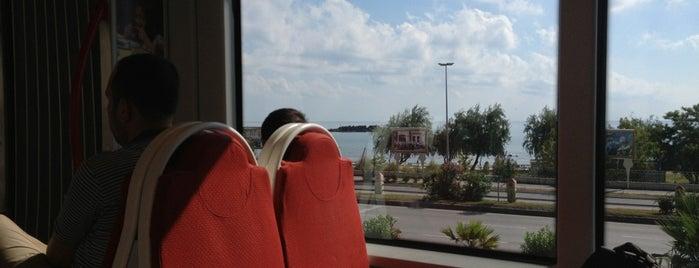 Fener Tramvay Durağı is one of Orte, die Yunus gefallen.