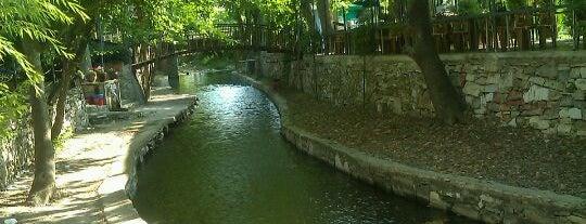Durmaz Alabalık is one of สถานที่ที่ Chemist ถูกใจ.