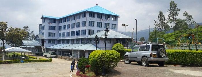 Blue Field Tea Factory is one of Lieux qui ont plu à Alice🍒.