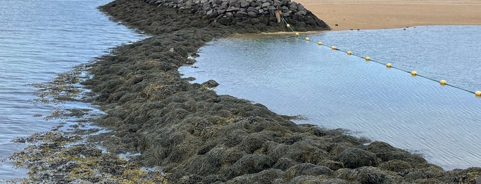 Ylströndin í Nauthólsvík | Nauthólsvík Geothermal Beach is one of Reykjavík Spots.
