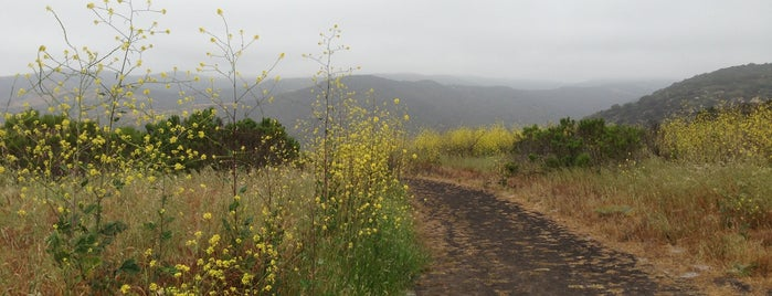 Moro Ridge Trail is one of SoCal Camp!.