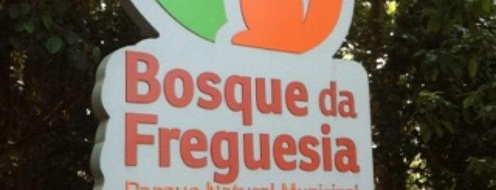 Bosque da Freguesia (APA) is one of Orte, die Bruno gefallen.