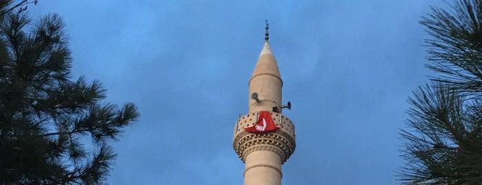 Havzan Yeşil Camii is one of Konya Meram Mescit ve Camileri.