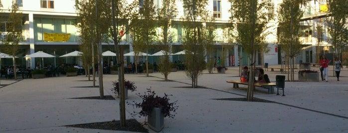 CRAI Campus Catalunya URV is one of Best Around the World!.