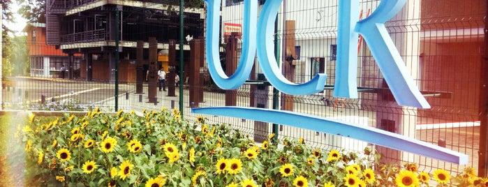 Universidad de Costa Rica is one of UCR.