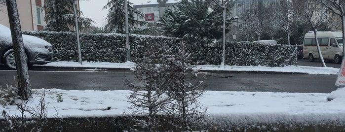 Yenikent Eczanesi is one of SU things (Edit/Merge/Delete).