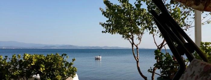 Yenimahalle Sahil is one of Balikesir.