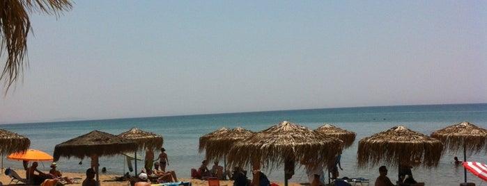 Παραλία Γλύφας is one of Zakynthos.
