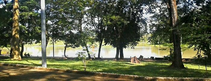 Parque Municipal Milton Prates is one of Pontos turísticos.