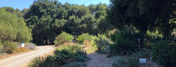 Palo Alto Community Garden is one of California.