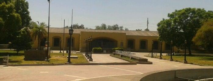 Museo del Área Fundacional is one of Cuyo (AR).