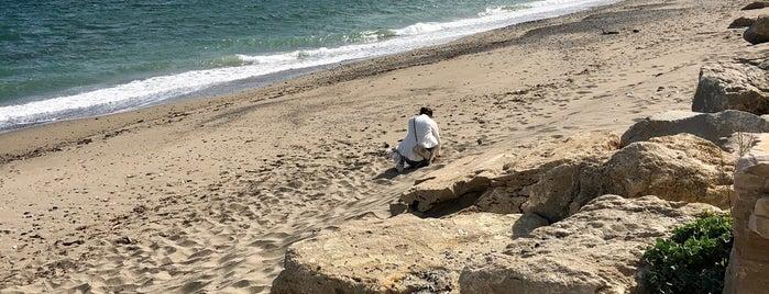 Playa Esmeralda is one of Lugares favoritos de Natia.