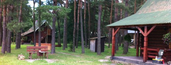 "База відпочинку ""Лісна"" is one of Lviv. Nature."