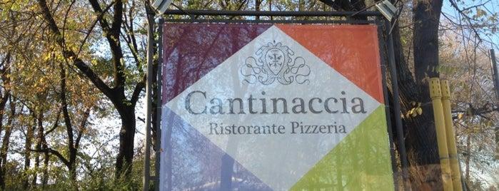 Cantinaccia is one of ristoranti.