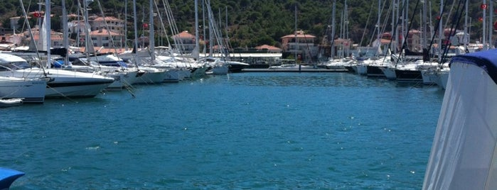 Mado is one of Best Of CESME.