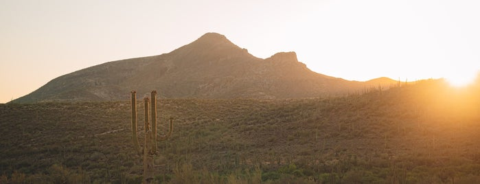 Spur Cross Ranch Conservation Area is one of Arizona March 2021.