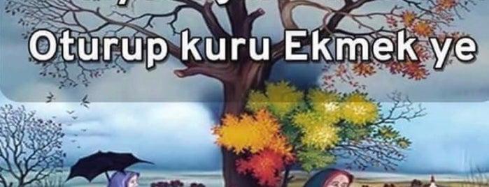 Bahcesehir Kumburgaz Yolu is one of SU things (Edit/Merge/Delete).