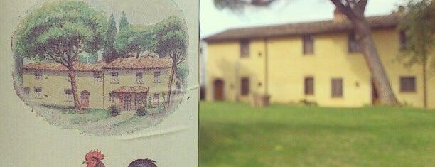 Bella Vista Agriturismo is one of Vasiliy : понравившиеся места.